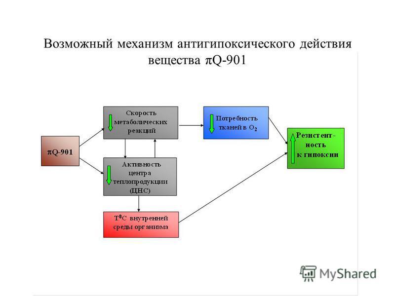 Возможный механизм анти гипоксического действия вещества πQ-901