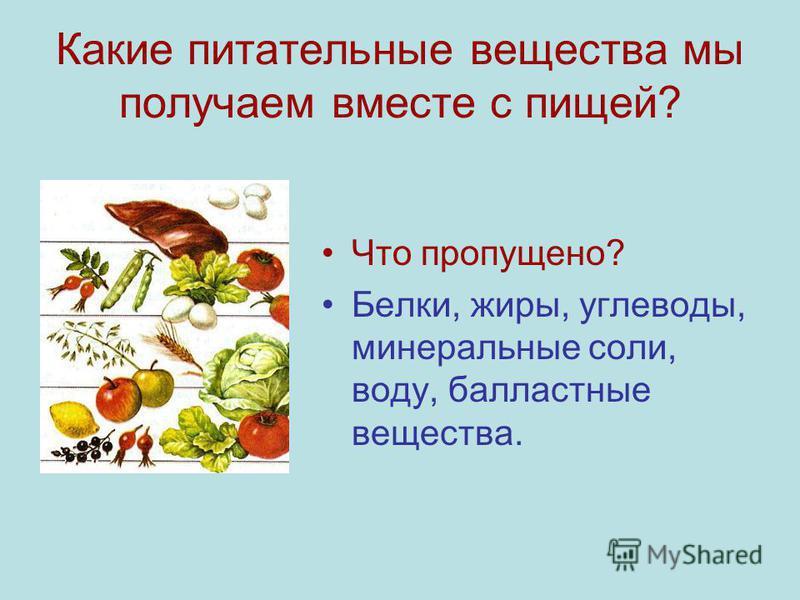 Какие питательные вещества мы получаем вместе с пищей? Что пропущено? Белки, жиры, углеводы, минеральные соли, воду, балластные вещества.
