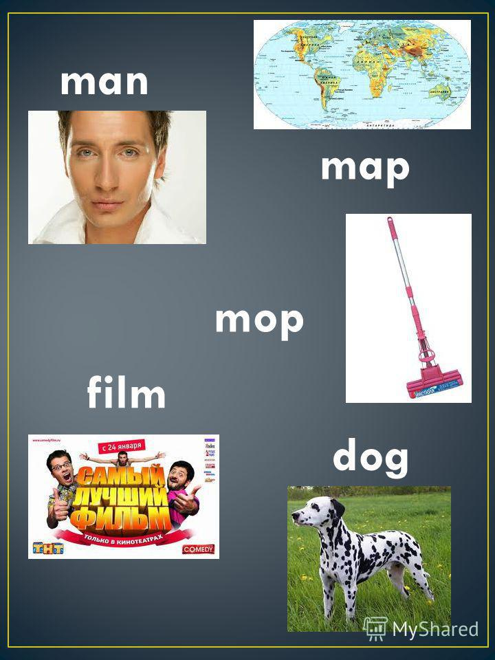 man map film dog mop