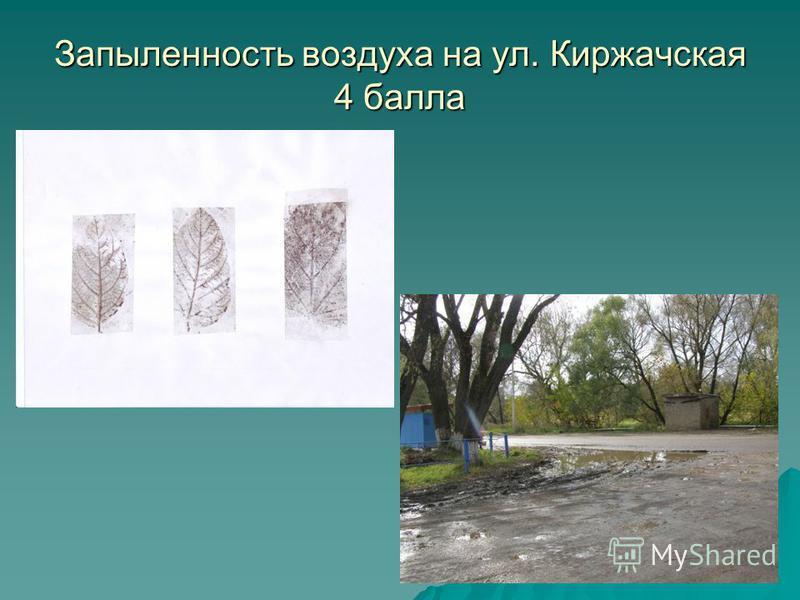Запыленность воздуха на ул. Киржачская 4 балла