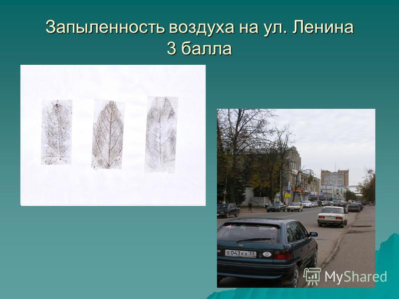Запыленность воздуха на ул. Ленина 3 балла