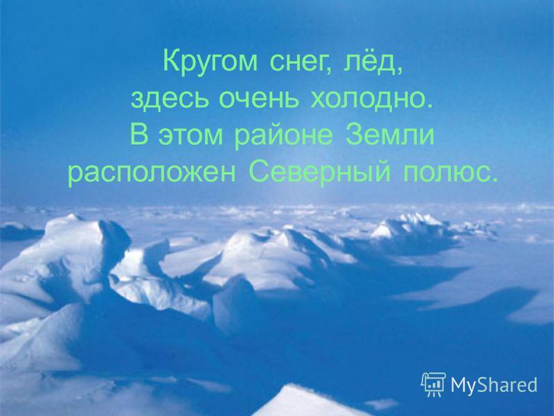 Кругом снег, лёд, здесь очень холодно. В этом районе Земли расположен Северный полюс.