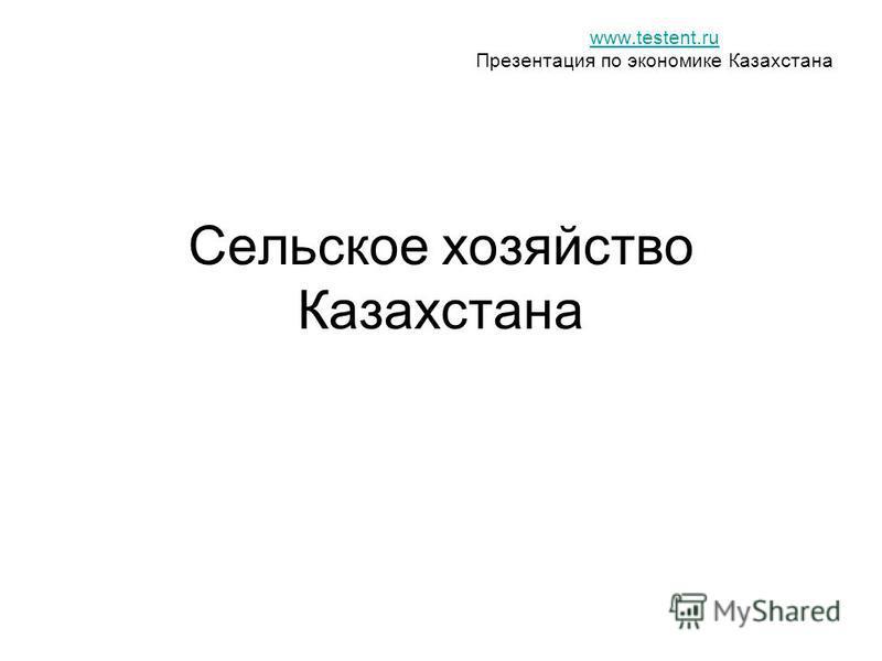 Сельское хозяйство Казахстана www.testent.ru Презентация по экономике Казахстана