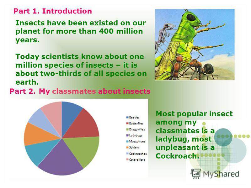 Insects have been existed on our planet for more than 400 million years. Today scientists know about one million species of insects – it is about two-thirds of all species on earth. Part 2. My classmates about insects Most popular insect among my cla