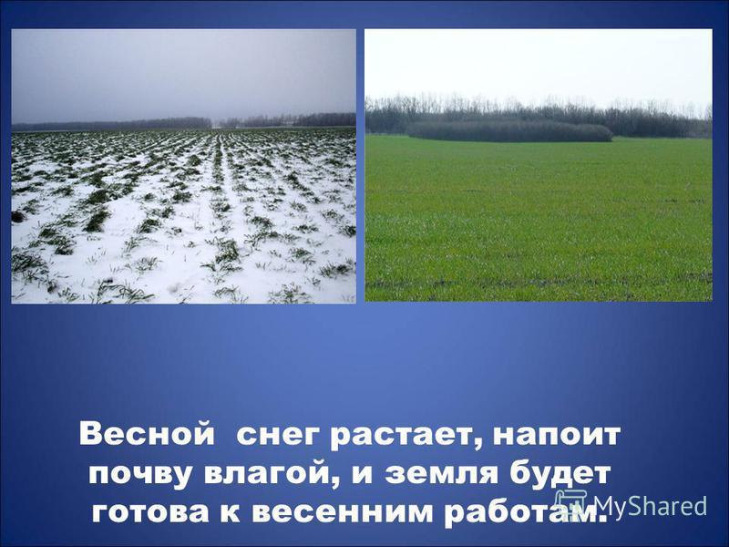 Весной снег растает, напоит почву влагой, и земля будет готова к весенним работам.