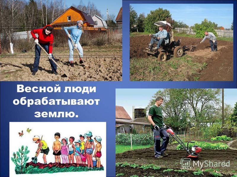 Весной люди обрабатывают землю.