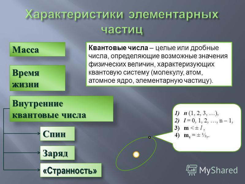 Масса Заряд Заряд Время жизни Внутренние квантовые числа Спин Спин Квантовые числа – целые или дробные числа, определяющие возможные значения физических величин, характеризующих квантовую систему (молекулу, атом, атомное ядро, элементарную частицу ).