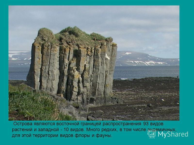 Острова являются восточной границей распространения 93 видов растений и западной - 10 видов. Много редких, в том числе эндемичных, для этой территории видов флоры и фауны.