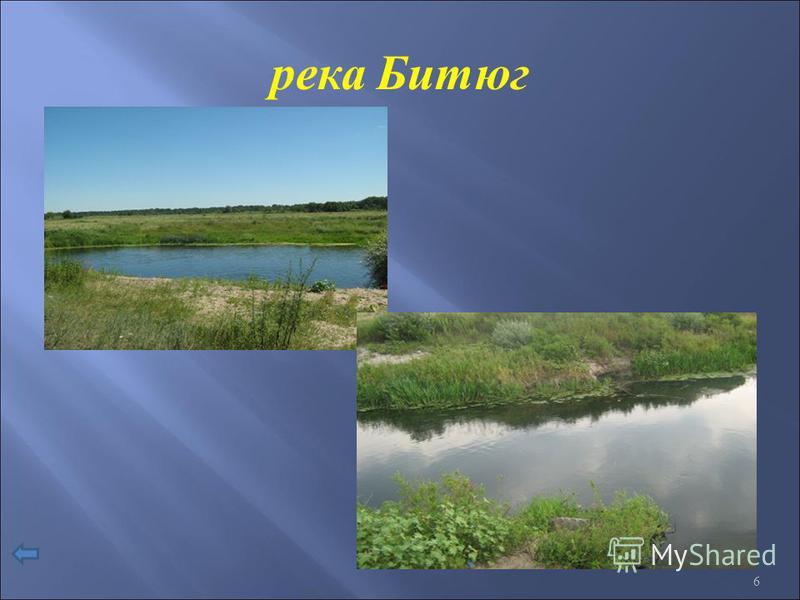 река Битюг 6