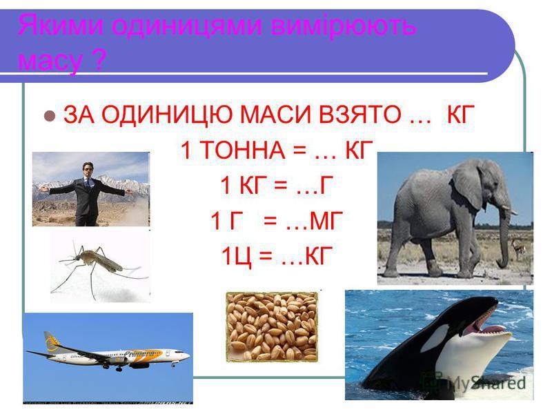 Якими одиницями вимірюють масу ? ЗА ОДИНИЦЮ МАСИ ВЗЯТО … КГ 1 ТОННА = … КГ 1 КГ = …Г 1 Г = …МГ 1Ц = …КГ