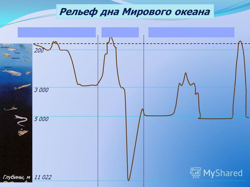 Рельеф дна Мирового океана 200 5 000 3 000 11 022 Глубины, м