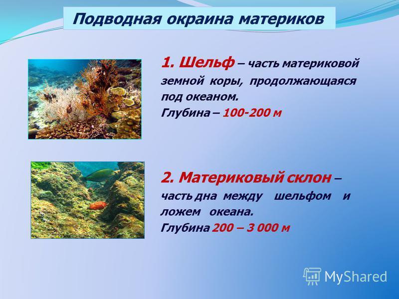 1. Шельф – часть материковой земной коры, продолжающаяся под океаном. Глубина – 100-200 м 2. Материковый склон – часть дна между шельфом и ложем океана. Глубина 200 – 3 000 м Подводная окраина материков