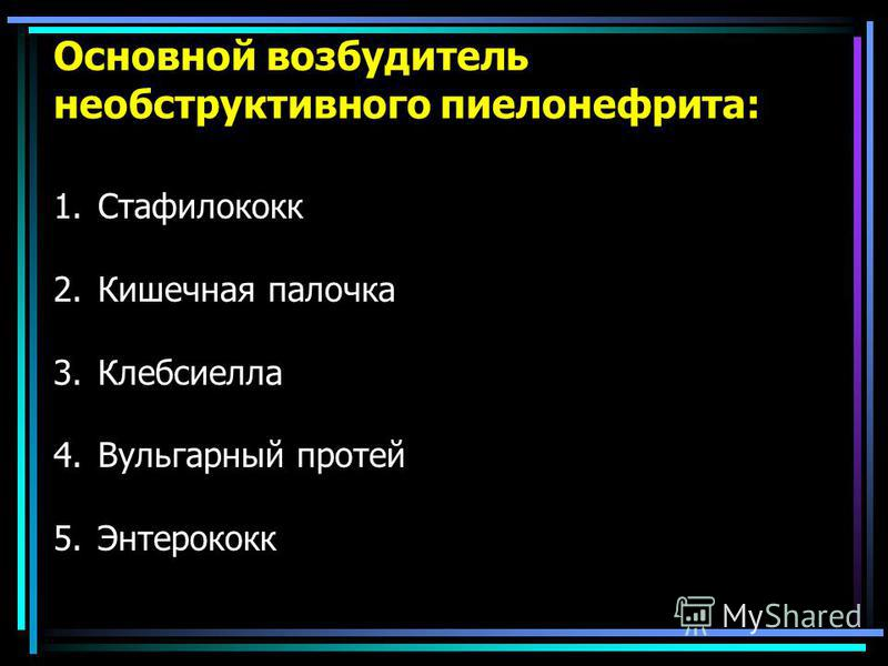 Основной возбудитель необструктивного пиелонефрита: 1. Стафилококк 2. Кишечная палочка 3. Клебсиелла 4. Вульгарный протей 5.Энтерококк