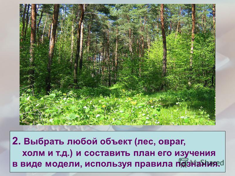 2. Выбрать любой объект (лес, овраг, холм и т.д.) и составить план его изучения в виде модели, используя правила познания.