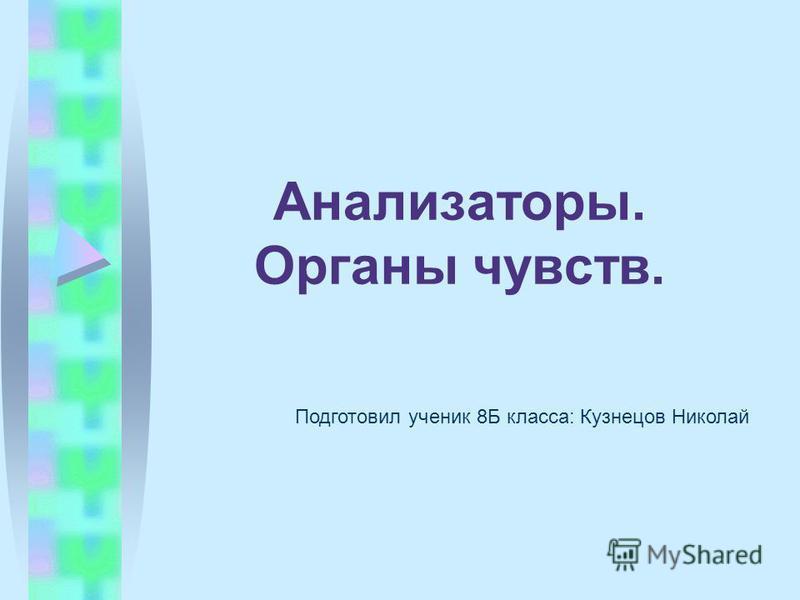 Анализаторы. Органы чувств. Подготовил ученик 8Б класса: Кузнецов Николай