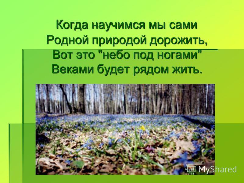 Когда научимся мы сами Родной природой дорожить, Вот это небо под ногами Веками будет рядом жить.