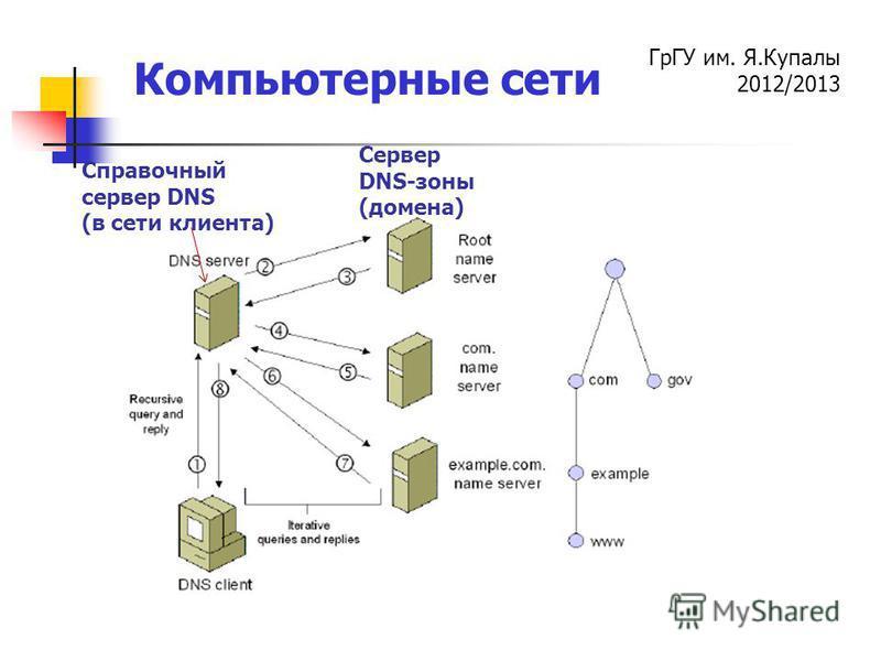 ГрГУ им. Я.Купалы 2012/2013 Компьютерные сети Сервер DNS-зоны (домена) Справочный сервер DNS (в сети клиента)