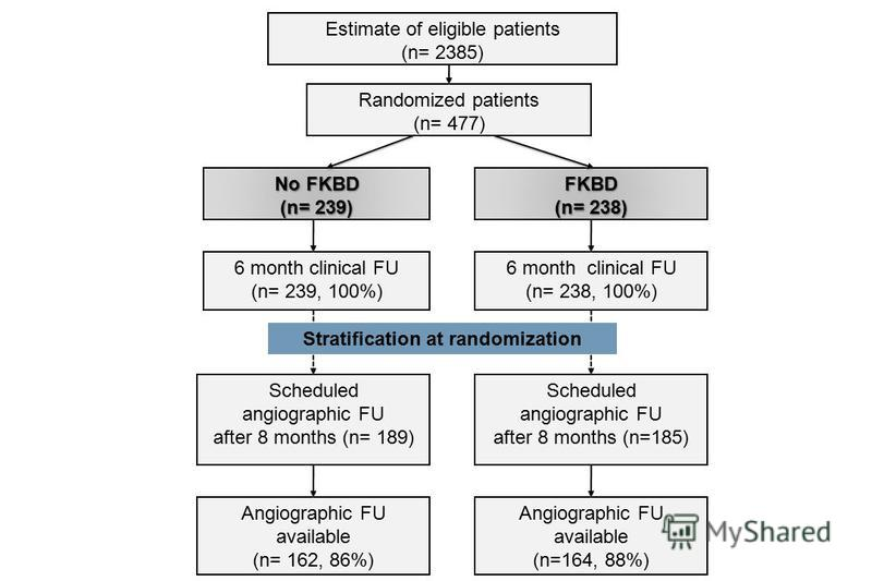 Estimate of eligible patients (n= 2385) FKBD (n= 238) Randomized patients (n= 477) No FKBD (n= 239) 6 month clinical FU (n= 238, 100%) 6 month clinical FU (n= 239, 100%) Scheduled angiographic FU after 8 months (n=185) Scheduled angiographic FU after