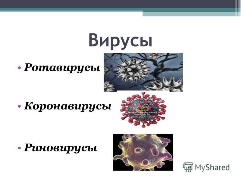 Вирусы Ротавирусы Коронавирусы Риновирусы