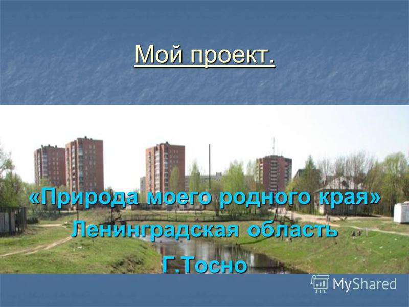 Мой проект. «Природа моего родного края» Ленинградская область Г.Тосно
