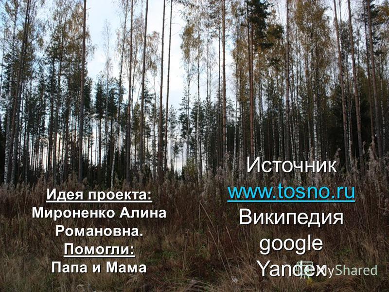 Источник www.tosno.ru ВикипедияgoogleYandex Идея проекта: Мироненко Алина Романовна. Помогли: Папа и Мама