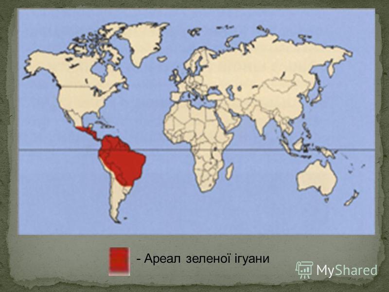 - Ареал зеленої ігуани