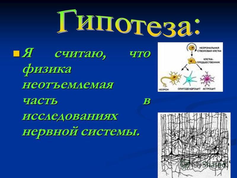 Я считаю, что физика неотъемлемая часть в исследованиях нервной системы.