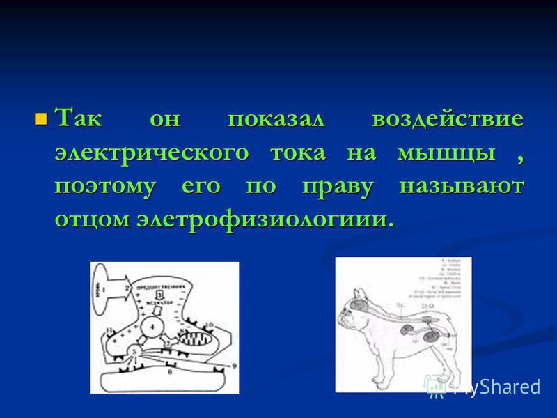 Так он показал воздействие электрического тока на мышцы, поэтому его по праву называют отцом электрофизиологии. Так он показал воздействие электрического тока на мышцы, поэтому его по праву называют отцом электрофизиологии.
