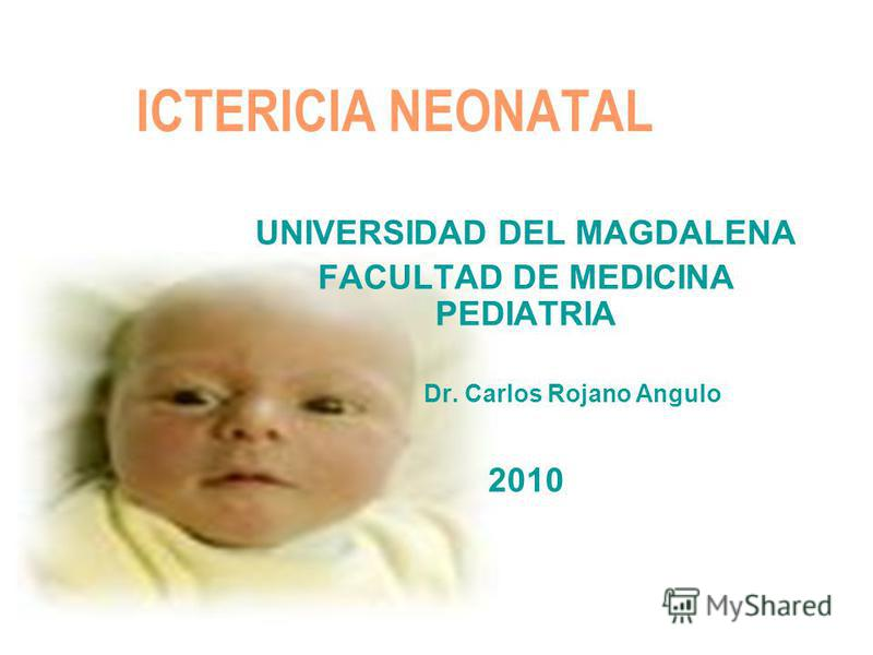 ICTERICIA NEONATAL UNIVERSIDAD DEL MAGDALENA FACULTAD DE MEDICINA PEDIATRIA Dr. Carlos Rojano Angulo 2010
