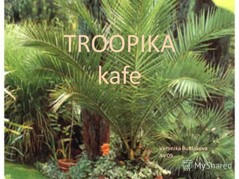 TROOPIKA kafe Veronika Buldakova Av 09