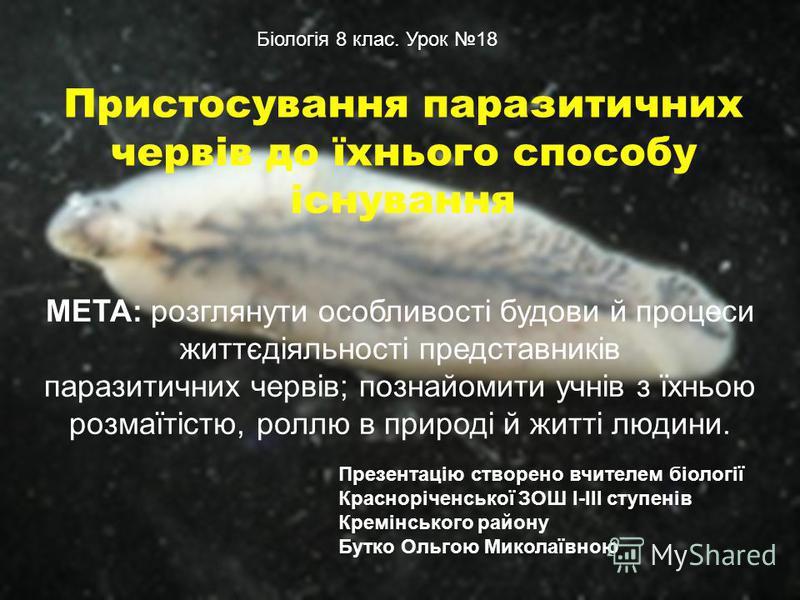 Пристосування паразитичних червів до їхнього способу існування МЕТА: розглянути особливості будови й процеси життєдіяльності представників паразитичних червів; познайомити учнів з їхньою розмаїтістю, роллю в природі й житті людини. Біологія 8 клас. У