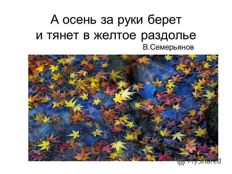 А осень за руки берет и тянет в желтое раздолье В.Семерьянов