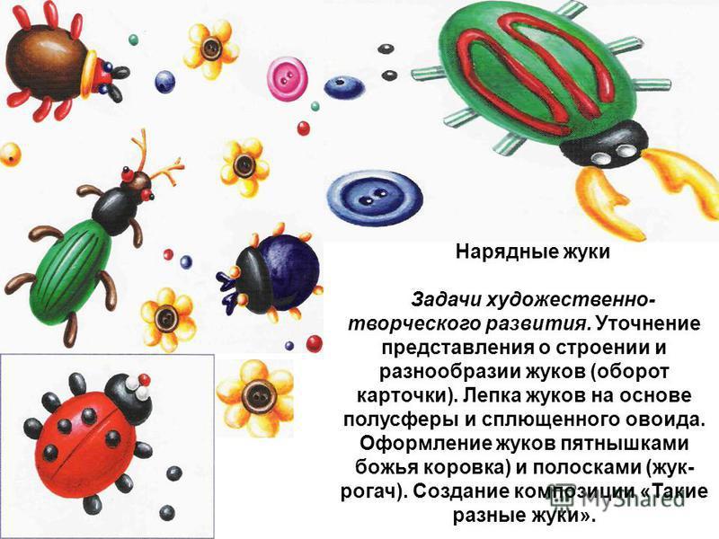 Нарядные жуки Задачи художественно- творческого развития. Уточнение представления о строении и разнообразии жуков (оборот карточки). Лепка жуков на основе полусферы и сплющенного овоида. Оформление жуков пятнышками божья коровка) и полосками (жук- ро