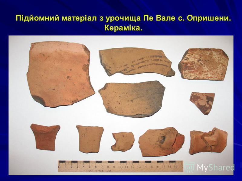 Археологічні дослідження в урочищі Станіште 2012 р.