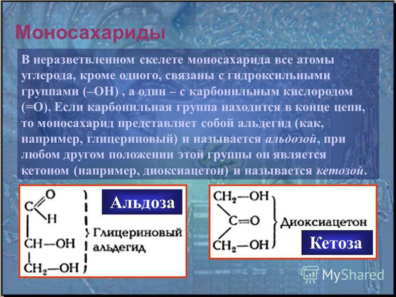 Моносахариды В неразветвленном скелете моносахарида все атомы углерода, кроме одного, связаны с гидроксильными группами (–ОН), а один – с карбонильным кислородом (=О). Если карбонильная группа находится в конце цепи, то моносахарид представляет собой