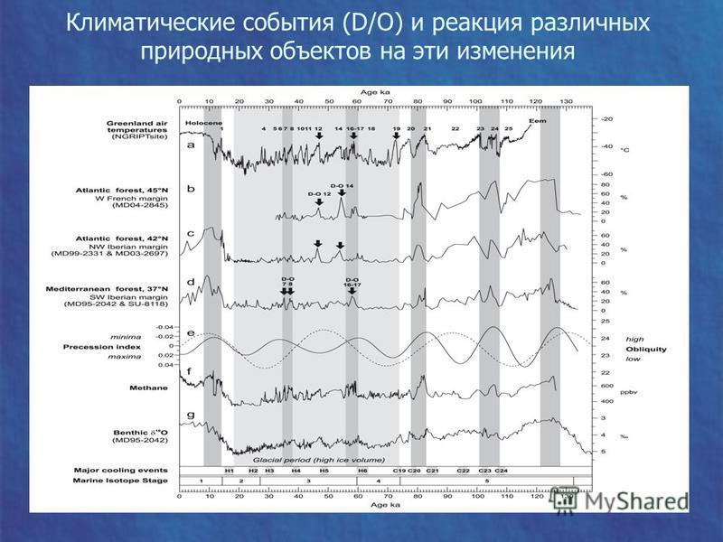 Климатические события (D/O) и реакция различных природных объектов на эти изменения