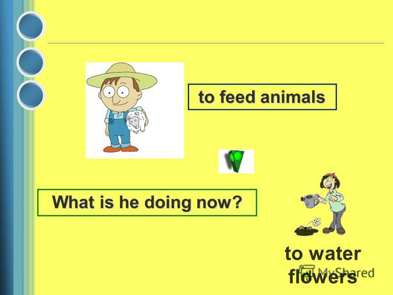 to feed animals What is he doing now? to water flowers