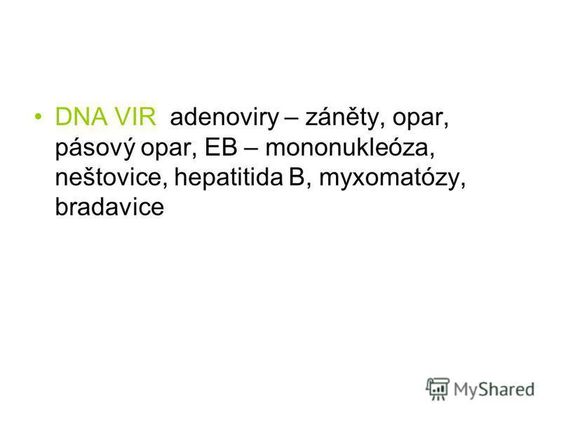 DNA VIR adenoviry – záněty, opar, pásový opar, EB – mononukleóza, neštovice, hepatitida B, myxomatózy, bradavice