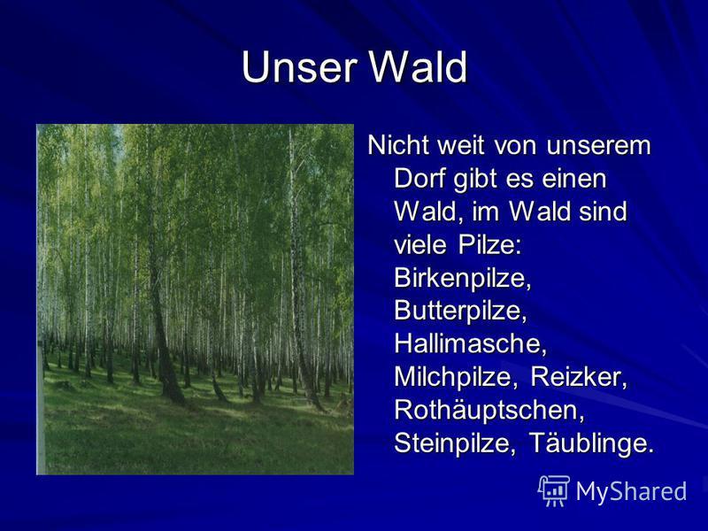 Unser Wald Nicht weit von unserem Dorf gibt es einen Wald, im Wald sind viele Pilze: Birkenpilze, Butterpilze, Hallimasche, Milchpilze, Reizker, Rothäuptschen, Steinpilze, Täublinge.