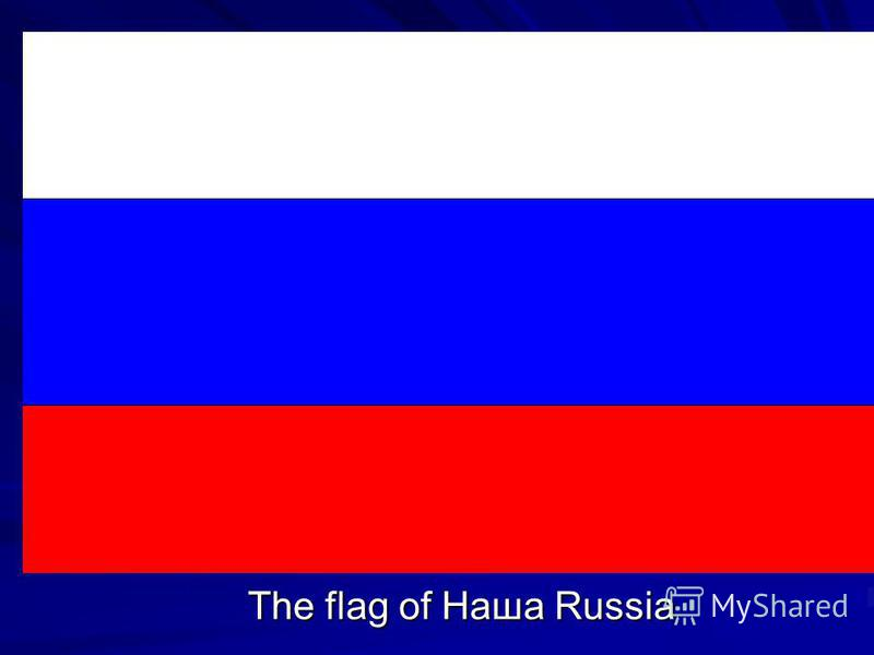 The flag of Наша Russia