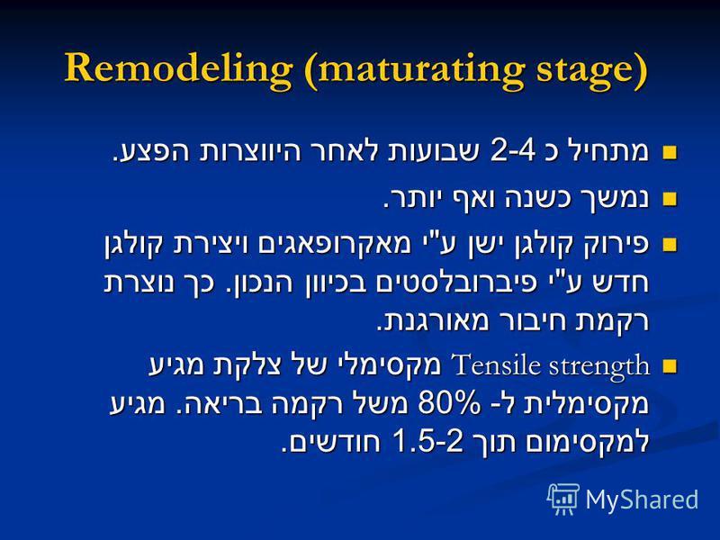 Remodeling (maturating stage) מתחיל כ 2-4 שבועות לאחר היווצרות הפצע. מתחיל כ 2-4 שבועות לאחר היווצרות הפצע. נמשך כשנה ואף יותר. נמשך כשנה ואף יותר. פירוק קולגן ישן ע