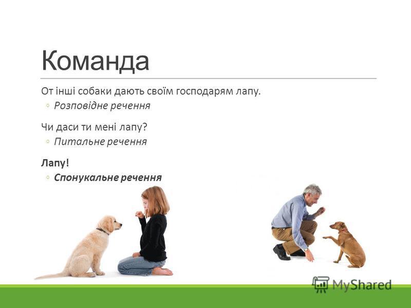 Команда От інші собаки дають своїм господарям лапу. Розповідне речення Чи даси ти мені лапу? Питальне речення Лапу! Спонукальне речення