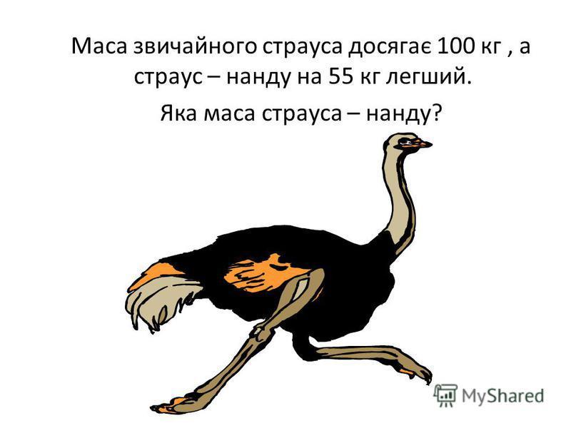 Маса звичайного страуса досягає 100 кг, а страус – нанду на 55 кг легший. Яка маса страуса – нанду?