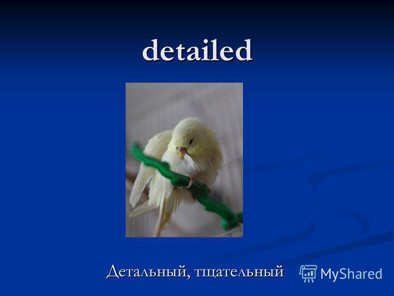 detailed Детальный, тщательный