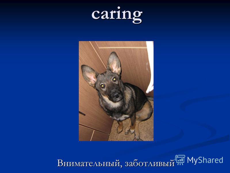 caring Внимательный, заботливый