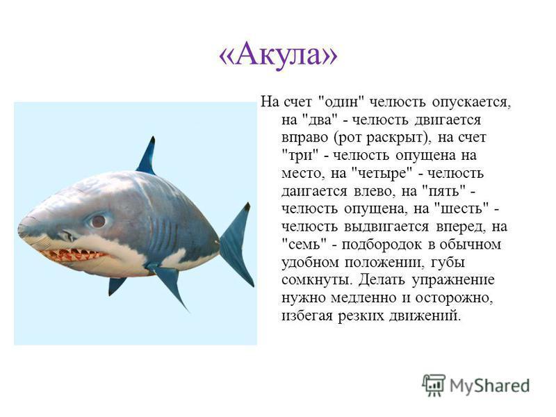«Акула» На счет