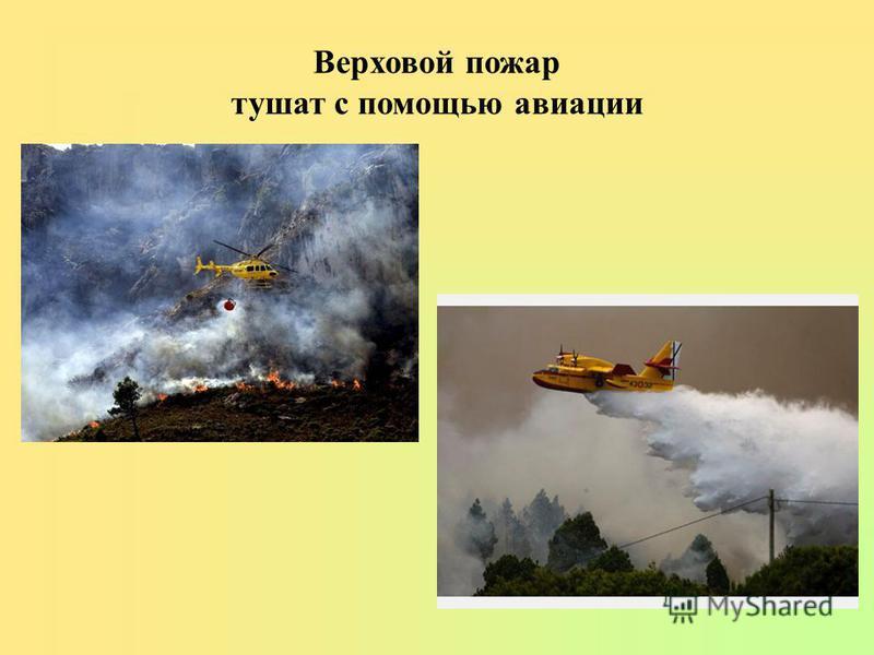 Верховой пожарр тушат с помощью авиации