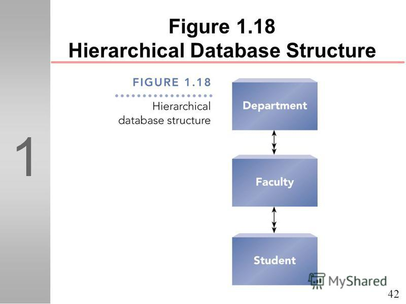 42 1 Figure 1.18 Hierarchical Database Structure