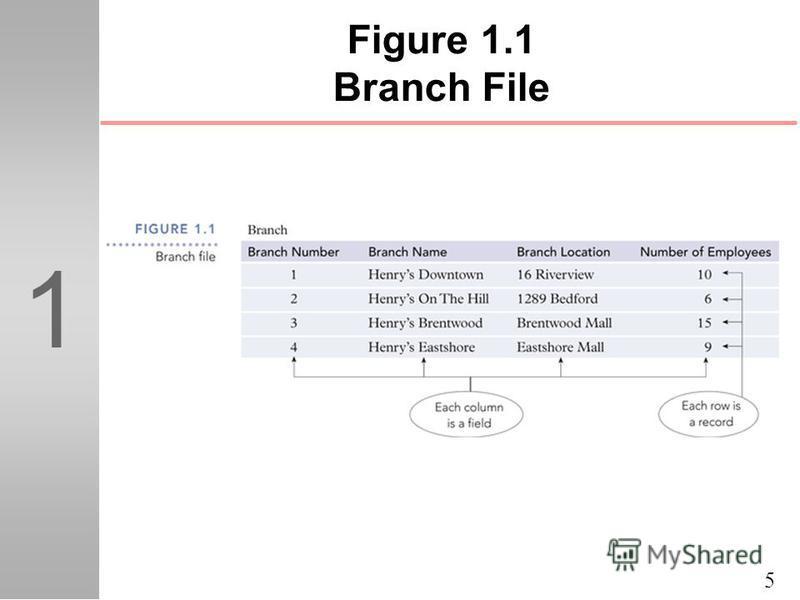 5 1 Figure 1.1 Branch File