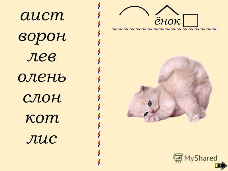 аист ворон лев олень слон кот лисёнок